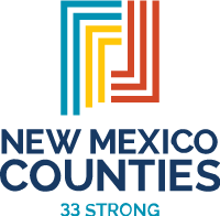 NM Counties