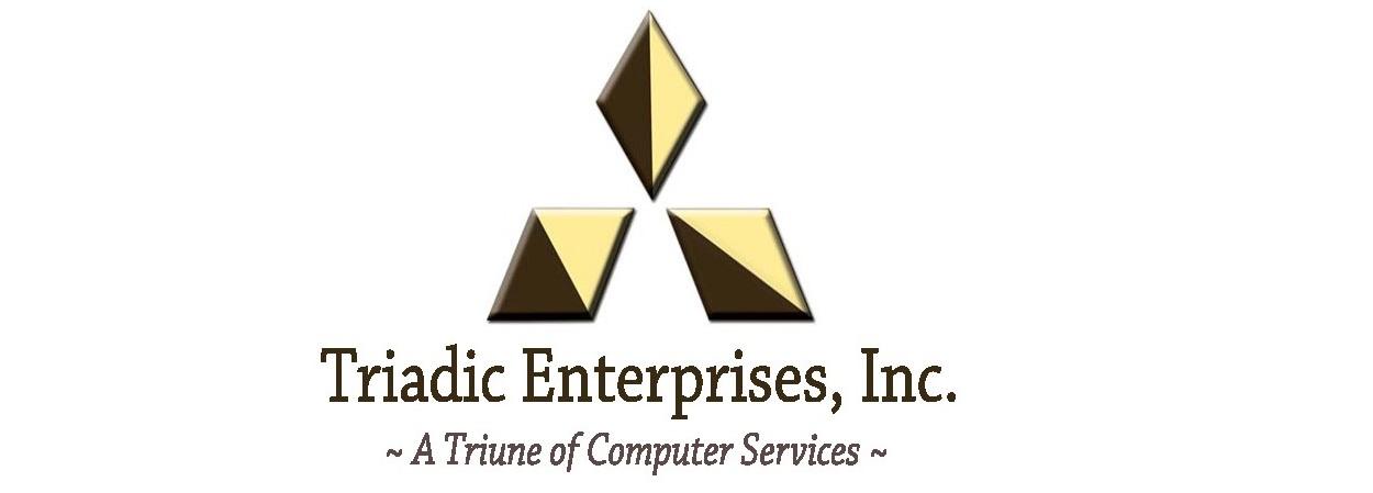Triadic Enterprises, Inc. logo